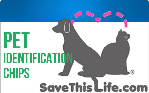 Pet identification chips can help safely return your pets if they become lost!